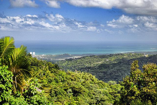 Puerto Rico - das sollten Sie beim Export beachten.